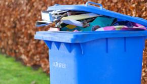 Review - Wheelie Bin Cleaning Opp