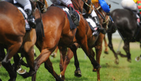 Bet2Win - Punter's Pal - Review